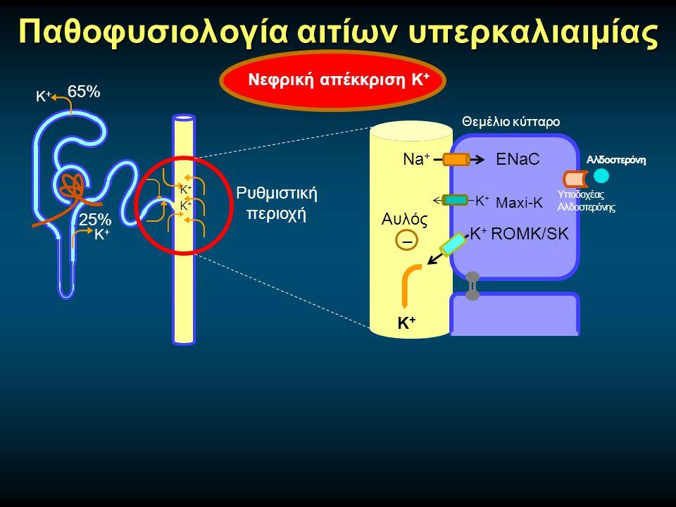Νεφρική απέκκριση Κ + Παθοφυσιολογία αιτίων υπερκαλιαιμίας Κ+Κ+ 65% 25% Κ+Κ+ Κ+Κ+ Κ+Κ+ Na + ENaC Κ+Κ+ Κ+Κ+ Maxi-K ROMK/SK Αυλός _ Κ+Κ+ Υποδοχέας Αλδοστερόνης Αλδοστερόνη Ρυθμιστική περιοχή Θεμέλιο κύτταρο