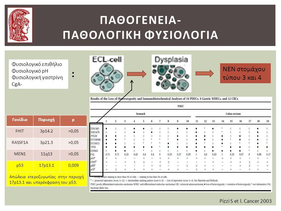 ΠΑΘΟΓΕΝΕΙΑ- ΠΑΘΟΛΟΓΙΚΗ ΦΥΣΙΟΛΟΓΙΑ Φυσιολογικό επιθήλιο Φυσιολογικό pH Φυσιολογική γαστρίνη CgA- ΝΕΝ στομάχου τύπου 3 και 4 : Pizzi S et l.