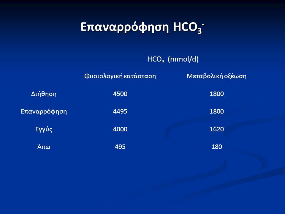 Επαναρρόφηση HCO 3 - HCO 3 - (mmol/d) Φυσιολογική κατάστασηΜεταβολική οξέωση Διήθηση45001800 Επαναρρόφηση44951800 Εγγύς40001620 Άπω495180