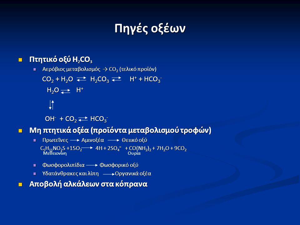 Ημερήσια προσθήκη οξέων Πτητικά οξέα Πτητικά οξέα 13.000 – 20.000 mmoles CO 2 13.000 – 20.000 mmoles CO 2 Μη πτητικά οξέα Μη πτητικά οξέα 40 – 60 mmoles οργανικών και ανόργανων οξέων 40 – 60 mmoles οργανικών και ανόργανων οξέων Αποβολή αλκαλικών με τα κόπρανα Αποβολή αλκαλικών με τα κόπρανα 20 – 40 mmoles 20 – 40 mmoles