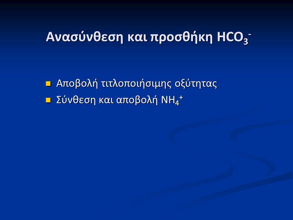 Ανασύνθεση και προσθήκη HCO 3 - Αποβολή τιτλοποιήσιμης οξύτητας Αποβολή τιτλοποιήσιμης οξύτητας Σύνθεση και αποβολή NH 4 + Σύνθεση και αποβολή NH 4 +