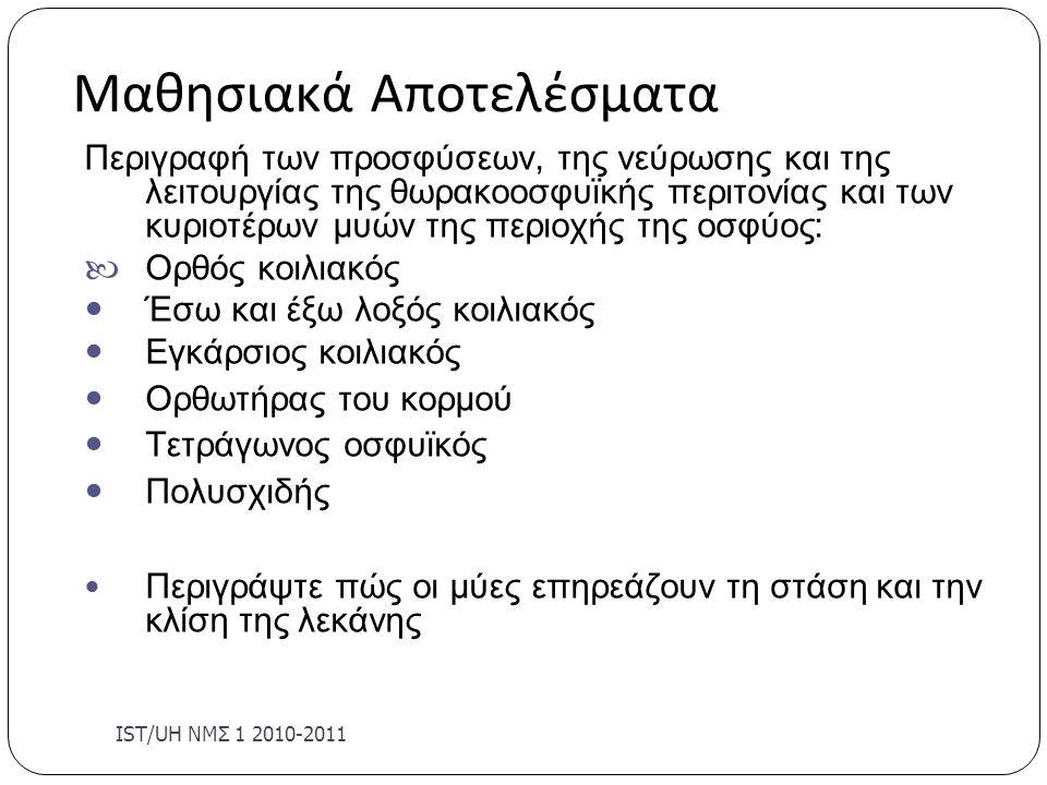 Εγκάρσιος κοιλιακός ( TrA) Lumbar Musculature 13 Έκφυση:7-12 η πλευρά, θωρακο/κη περιτονία, λαγόνια ακρολοφία, βουβωνικός σύνδεσμός Κατάφυση: λευκή γραμμή, ηβική σύμφυση, ηβική ακρολοφία, ξιφοειδη απόφυση Δράση:Αυξάνει ενδοκοιλιακή πίεση, σταθεροποιει κορμό Νεύρωση: μεσοπλεύρια νεύρα Θ7-Ο1, υποπλεύριο νεύρο