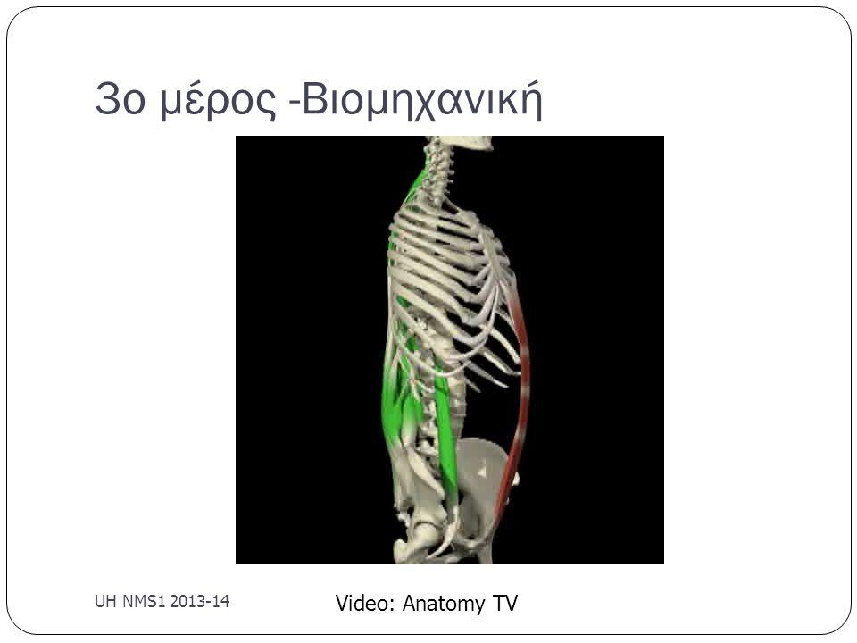 3ο μέρος -Βιομηχανική UH NMS1 2013-14 Video: Anatomy TV