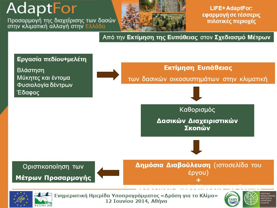 LIFE+ AdaptFor: εφαρμογή σε τέσσερις πιλοτικές περιοχές Από την Εκτίμηση της Ευπάθειας στον Σχεδιασμό Μέτρων Εργασία πεδίου+μελέτη Βλάστηση Μύκητες και έντομα Φυσιολογία δέντρων Έδαφος Εκτίμηση Ευπάθειας των δασικών οικοσυστημάτων στην κλιματική αλλαγή Καθορισμός Δασικών Διαχειριστικών Σκοπών Σχεδίων Μέτρων Προσαρμογής Δημόσια Διαβούλευση (ιστοσελίδα του έργου) + Συνάντηση Διαβούλευσης (με δασικές υπηρεσίες) Οριστικοποίηση των Μέτρων Προσαρμογής Ενημερωτική Ημερίδα Υποπρογράμματος «Δράση για το Κλίμα» 12 Ιουνίου 2014, Αθήνα