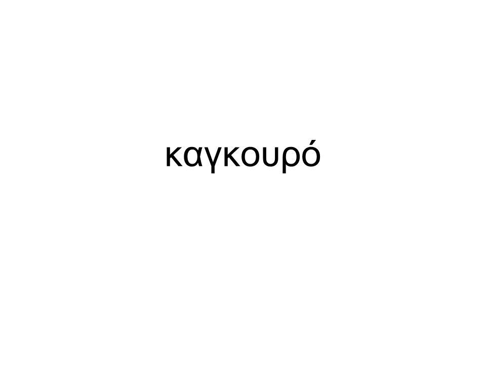 καγκουρό