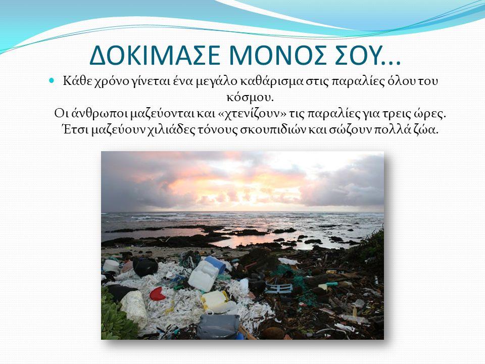 ΔΟΚΙΜΑΣΕ ΜΟΝΟΣ ΣΟΥ... Κάθε χρόνο γίνεται ένα μεγάλο καθάρισμα στις παραλίες όλου του κόσμου. Οι άνθρωποι μαζεύονται και «χτενίζουν» τις παραλίες για τ
