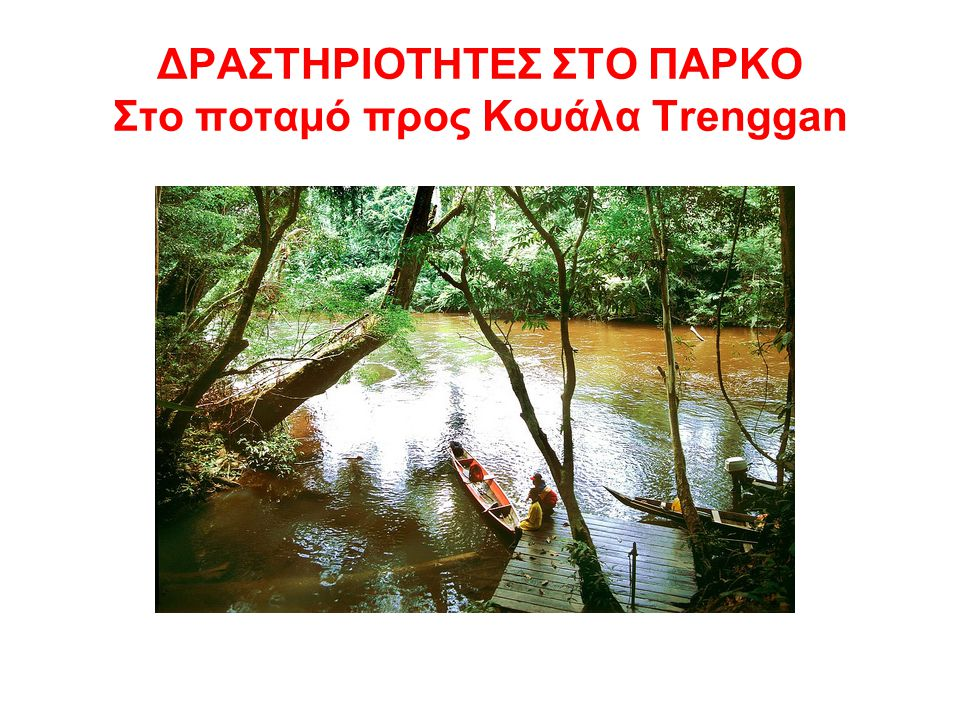 ΔΡΑΣΤΗΡΙΟΤΗΤΕΣ ΣΤΟ ΠΑΡΚΟ Στο ποταμό προς Κουάλα Trenggan