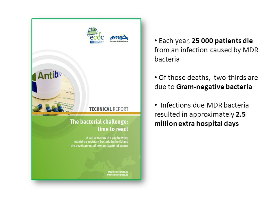 Each year, 25 000 patients die from an infection caused by MDR bacteria Of those deaths, two-thirds are due to Gram-negative bacteria Infections due M