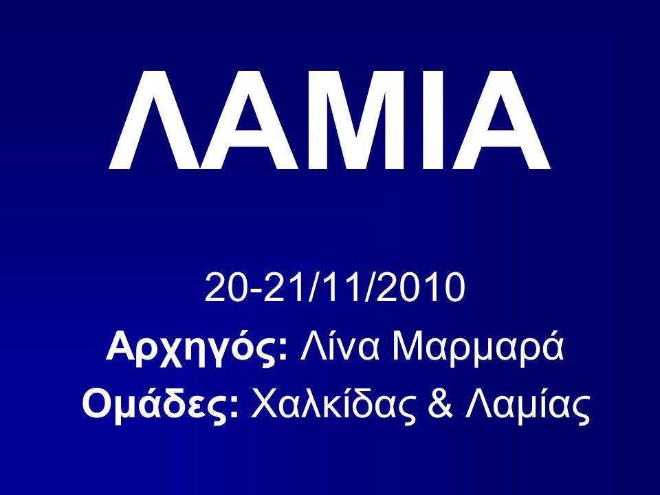 ΛΑΜΙΑ 20-21/11/2010 Αρχηγός: Λίνα Μαρμαρά Ομάδες: Χαλκίδας & Λαμίας