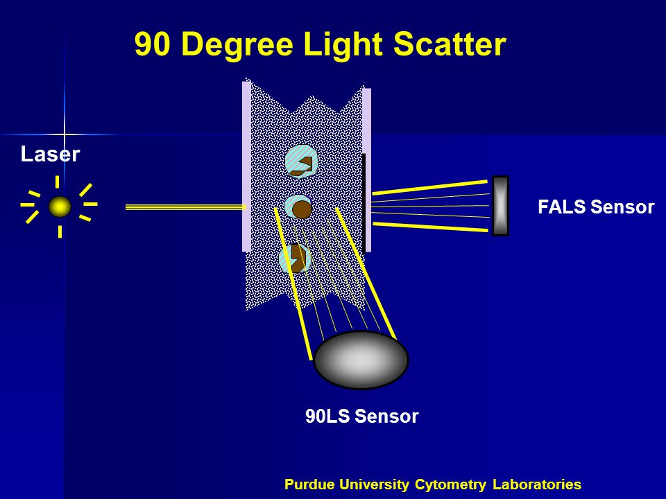 90 Degree Light Scatter FALS Sensor 90LS Sensor Laser Purdue University Cytometry Laboratories