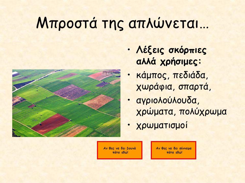 Μπροστά της απλώνεται… Λέξεις σκόρπιες αλλά χρήσιμες: κάμπος, πεδιάδα, χωράφια, σπαρτά, αγριολούλουδα, χρώματα, πολύχρωμα χρωματισμοί Αν θες να δει βουνά πάτα εδώ.