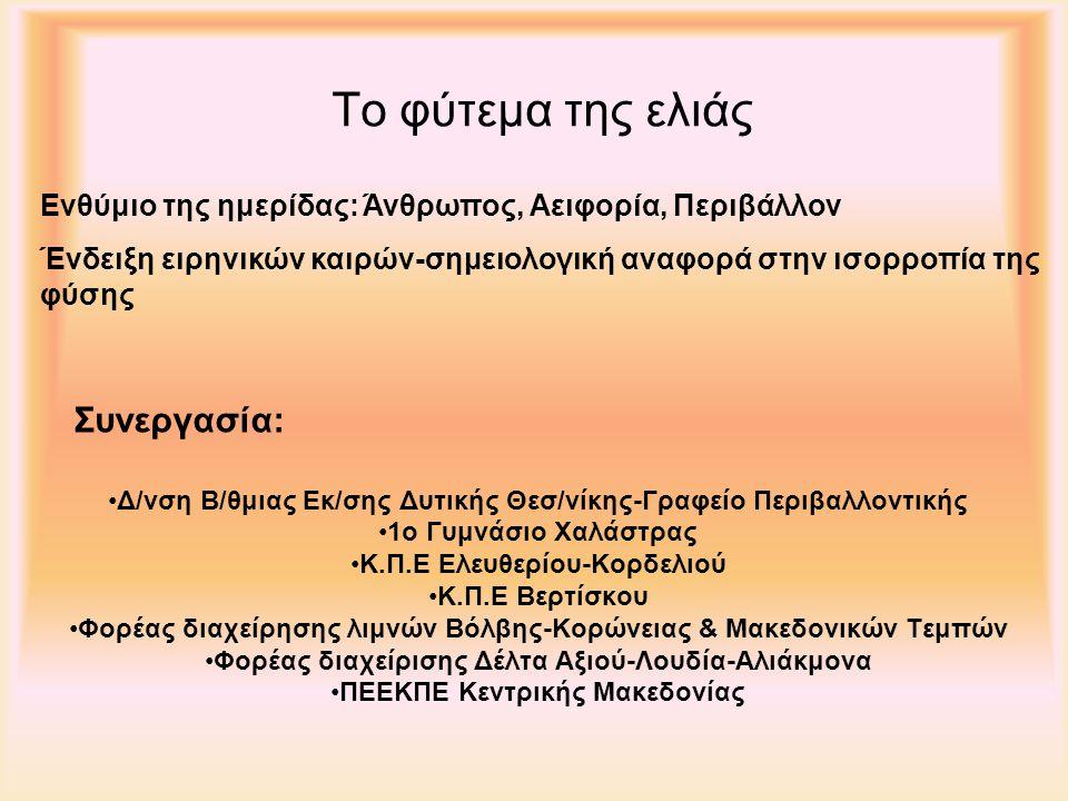 Το φύτεμα της ελιάς Δ/νση Β/θμιας Εκ/σης Δυτικής Θεσ/νίκης-Γραφείο Περιβαλλοντικής 1ο Γυμνάσιο Χαλάστρας Κ.Π.Ε Ελευθερίου-Κορδελιού Κ.Π.Ε Βερτίσκου Φορέας διαχείρησης λιμνών Βόλβης-Κορώνειας & Μακεδονικών Τεμπών Φορέας διαχείρισης Δέλτα Αξιού-Λουδία-Αλιάκμονα ΠΕΕΚΠΕ Κεντρικής Μακεδονίας Συνεργασία: Ενθύμιο της ημερίδας: Άνθρωπος, Αειφορία, Περιβάλλον Ένδειξη ειρηνικών καιρών-σημειολογική αναφορά στην ισορροπία της φύσης