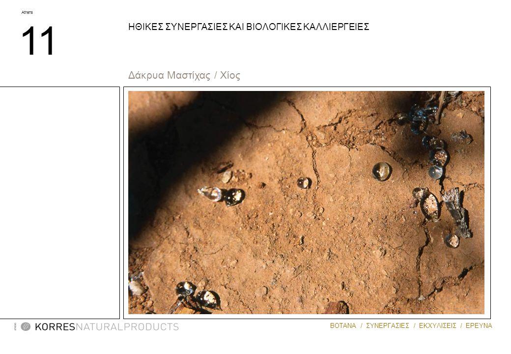 Athens 11 ΒΟΤΑΝΑ / ΣΥΝΕΡΓΑΣΙΕΣ / ΕΚΧΥΛΙΣΕΙΣ / ΕΡΕΥΝΑ ΗΘΙΚΕΣ ΣΥΝΕΡΓΑΣΙΕΣ ΚΑΙ ΒΙΟΛΟΓΙΚΕΣ ΚΑΛΛΙΕΡΓΕΙΕΣ Δάκρυα Μαστίχας / Χίος