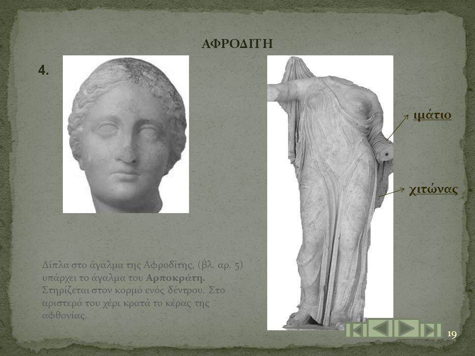 19 ΑΦΡΟΔΙΤΗ 4. Δίπλα στο άγαλμα της Αφροδίτης, (βλ. αρ. 5) υπάρχει το άγαλμα του Αρποκράτη. Στηρίζεται στον κορμό ενός δέντρου. Στο αριστερό του χέρι