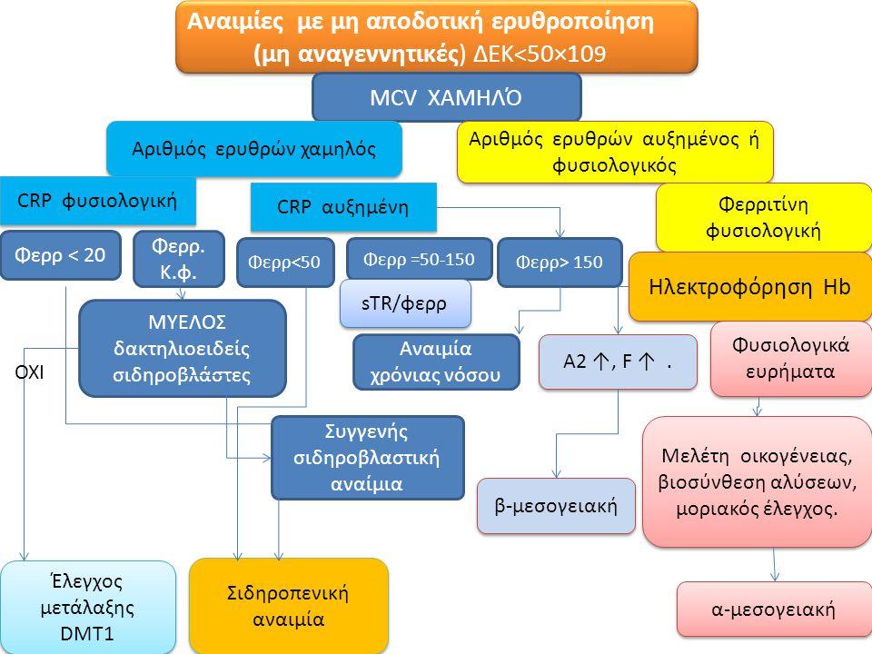 Αναιμίες με μη αποδοτική ερυθροποίηση (μη αναγεννητικές) ΔΕΚ<50×10 9 Αναιμίες με μη αποδοτική ερυθροποίηση (μη αναγεννητικές) ΔΕΚ<50×10 9 MCV XAMHΛΌ Α