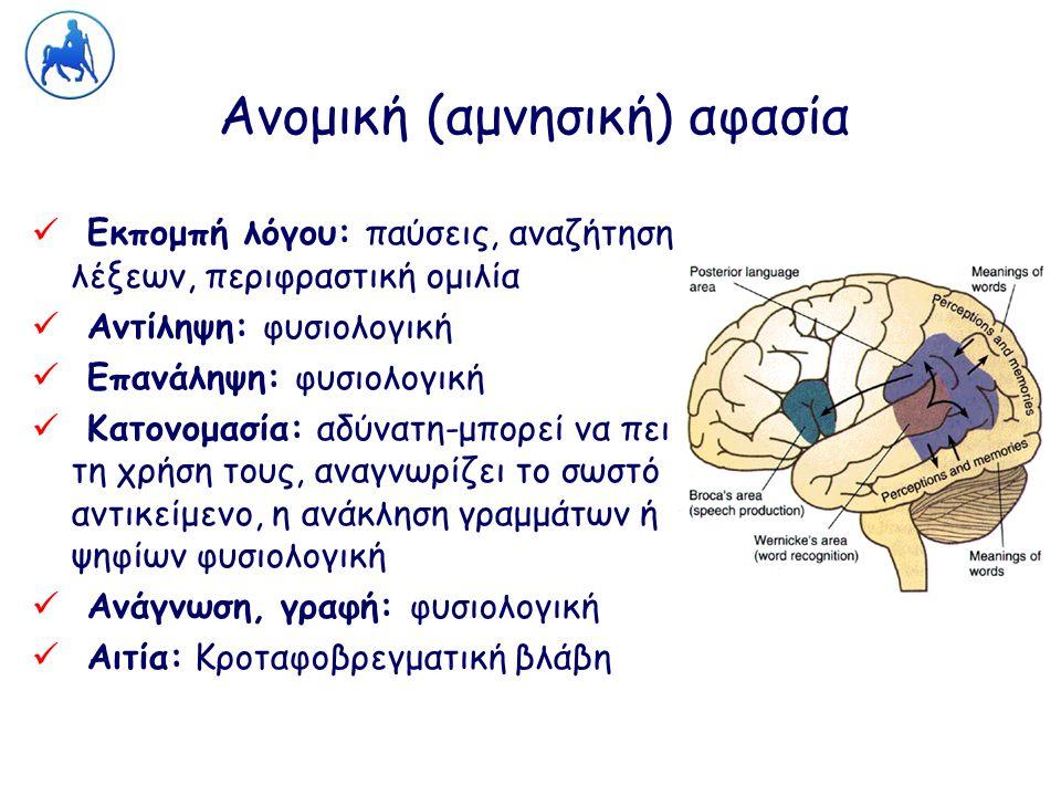Ανομική (αμνησική) αφασία Εκπομπή λόγου: παύσεις, αναζήτηση λέξεων, περιφραστική ομιλία Αντίληψη: φυσιολογική Επανάληψη: φυσιολογική Κατονομασία: αδύν