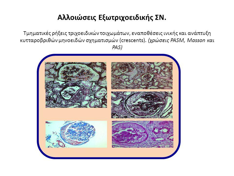 Copyright ©2010 American Society of Nephrology Tervaert, T.