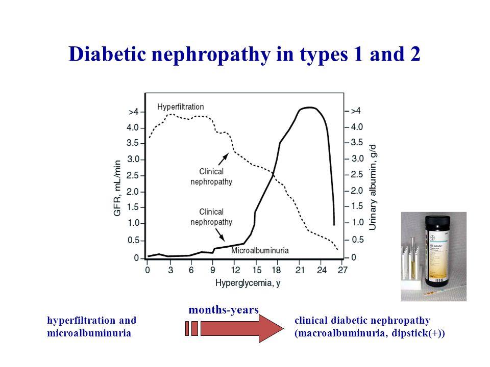 Φυσική εξέλιξη της διαβητικής νεφροπάθειας Η διαβητική νεφροπάθεια είναι μη αναστρέψιμη στον άνθρωπο.
