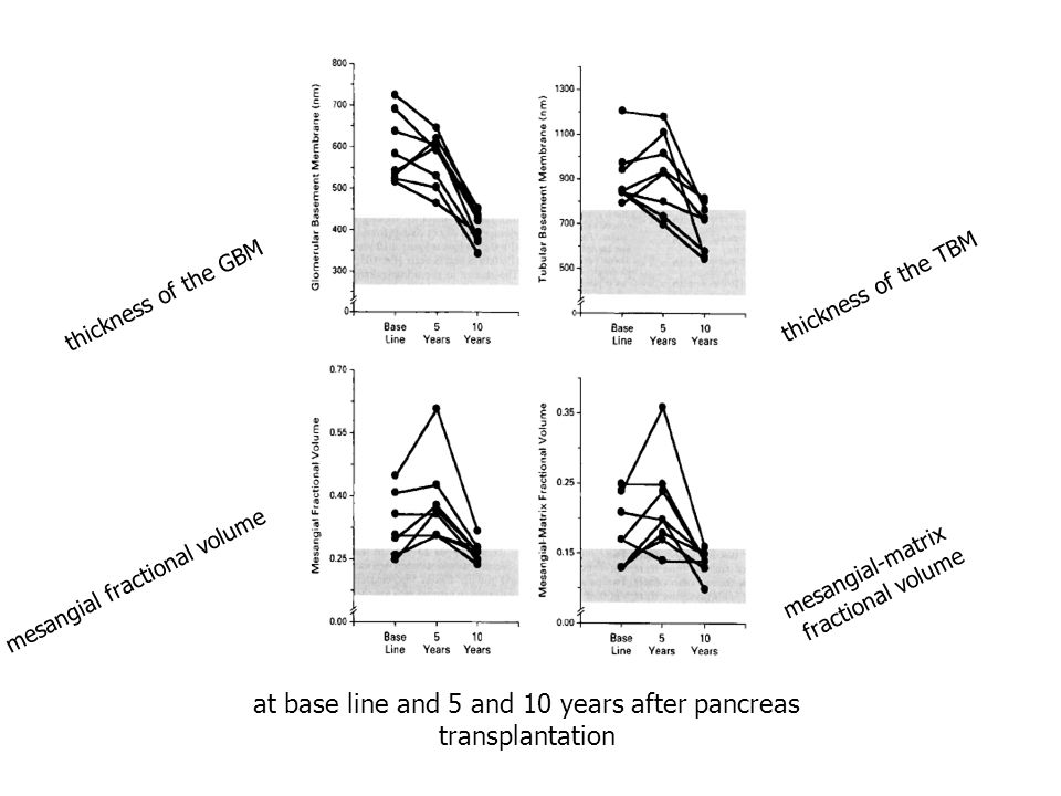 at base line and 5 and 10 years after pancreas transplantation thickness of the GBM thickness of the TBM mesangial fractional volume mesangial-matrix