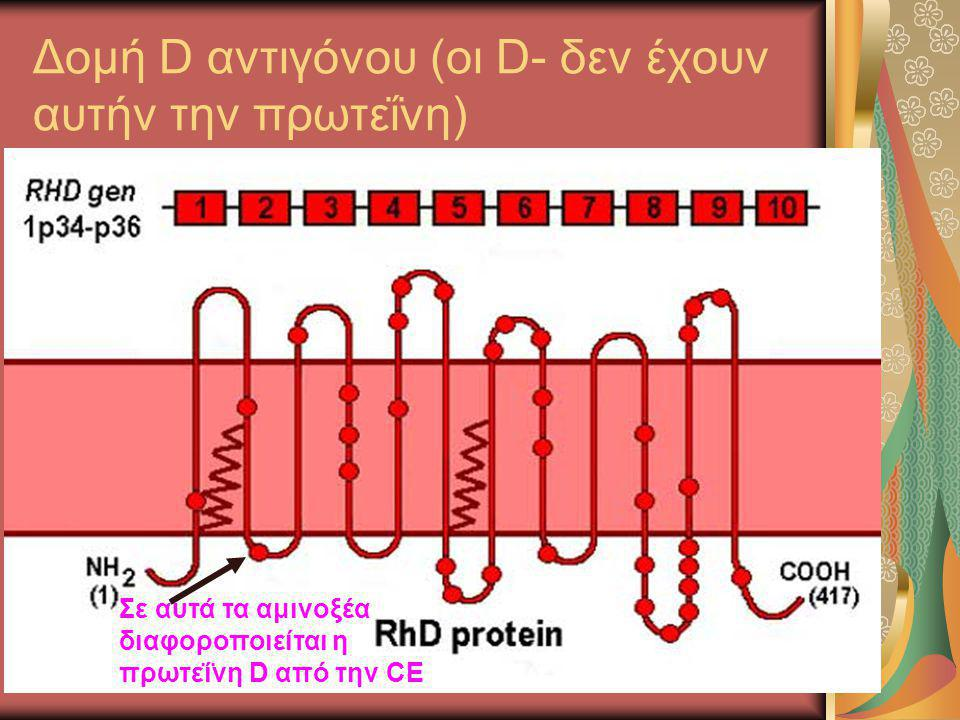 Δομή D αντιγόνου (οι D- δεν έχουν αυτήν την πρωτεΐνη) Σε αυτά τα αμινοξέα διαφοροποιείται η πρωτεΐνη D από την CE
