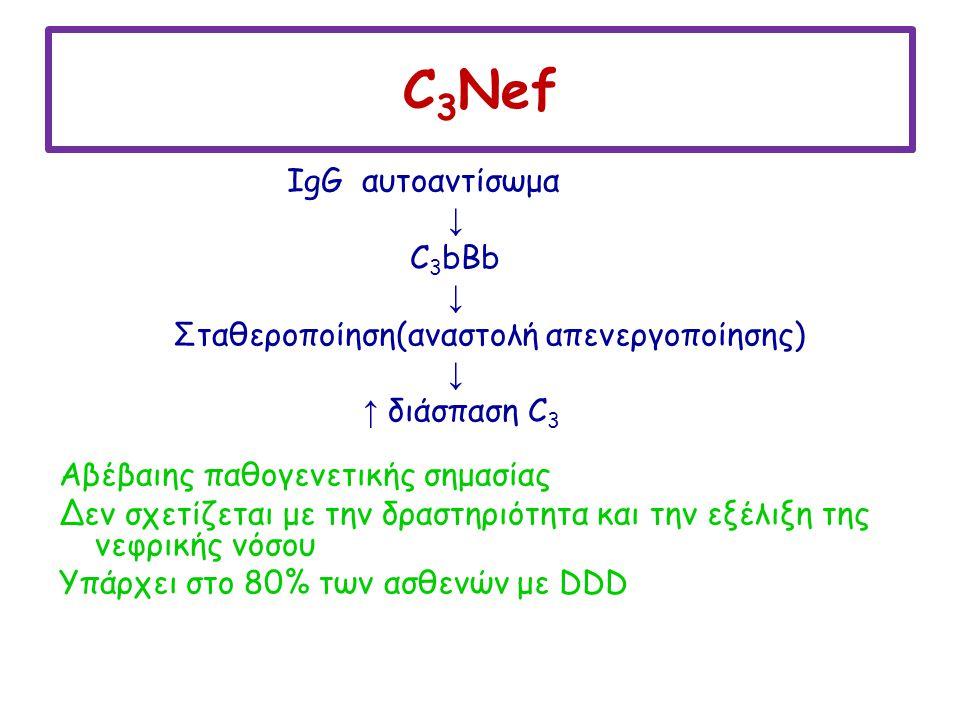 C 3 Nef IgG αυτοαντίσωμα ↓ C 3 bBb ↓ Σταθεροποίηση(αναστολή απενεργοποίησης) ↓ ↑ διάσπαση C 3 Αβέβαιης παθογενετικής σημασίας Δεν σχετίζεται με την δρ