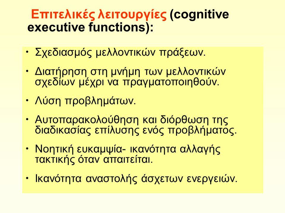 Επιτελικές λειτουργίες (cognitive executive functions): Σχεδιασμός μελλοντικών πράξεων.