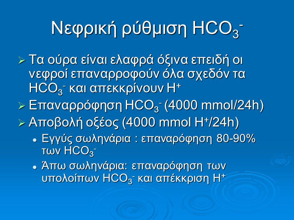 Νεφρική ρύθμιση HCO 3 -  Τα ούρα είναι ελαφρά όξινα επειδή οι νεφροί επαναρροφούν όλα σχεδόν τα HCΟ 3 - και απεκκρίνουν H +  Επαναρρόφηση HCO 3 - (4000 mmol/24h)  Αποβολή οξέος (4000 mmol H + /24h) Eγγύς σωληνάρια : επαναρόφηση 80-90% των HCO 3 - Eγγύς σωληνάρια : επαναρόφηση 80-90% των HCO 3 - Άπω σωληνάρια: επαναρόφηση των υπολοίπων HCO 3 - και απέκκριση Η + Άπω σωληνάρια: επαναρόφηση των υπολοίπων HCO 3 - και απέκκριση Η +