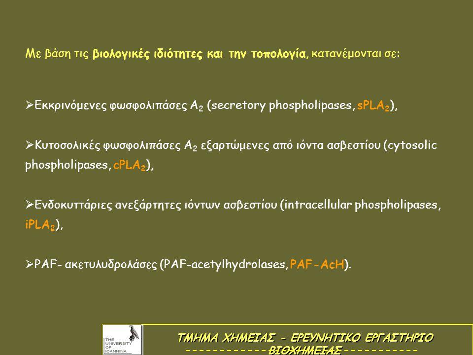 Με βάση τις βιολογικές ιδιότητες και την τοπολογία, κατανέμονται σε:  Εκκρινόμενες φωσφολιπάσες Α 2 (secretory phospholipases, sPLA 2 ),  Κυτοσολικές φωσφολιπάσες Α 2 εξαρτώμενες από ιόντα ασβεστίου (cytosolic phospholipases, cPLA 2 ),  Ενδοκυττάριες ανεξάρτητες ιόντων ασβεστίου (intracellular phospholipases, iPLA 2 ),  PAF- ακετυλυδρολάσες (PAF-acetylhydrolases, PAF-AcH).