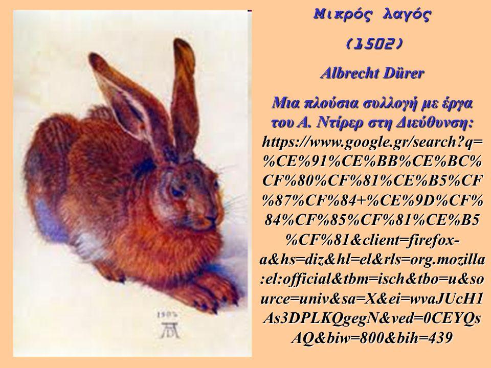 Μικρός λαγός (1502) Albrecht Dürer Μια πλούσια συλλογή με έργα του Α. Ντίρερ στη Διεύθυνση: https://www.google.gr/search?q= %CE%91%CE%BB%CE%BC% CF%80%