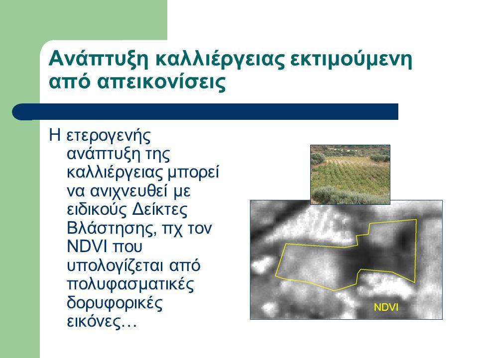 Ανάπτυξη καλλιέργειας εκτιμούμενη από απεικονίσεις Η ετερογενής ανάπτυξη της καλλιέργειας μπορεί να ανιχνευθεί με ειδικούς Δείκτες Βλάστησης, πχ τον NDVI που υπολογίζεται από πολυφασματικές δορυφορικές εικόνες… NDVI