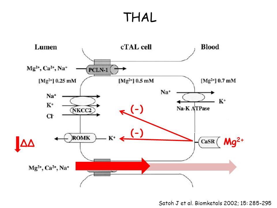 THAL Mg 2+ (-) ΔΔ Satoh J et al. Biomketals 2002; 15: 285-295