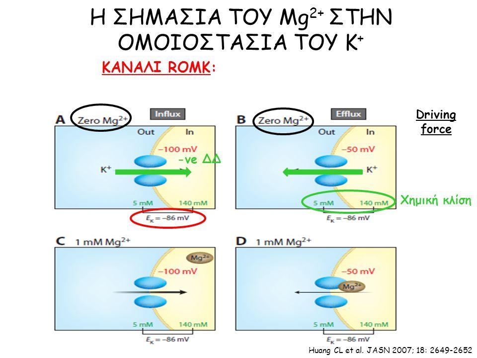 ΚΑΝΑΛΙ ROMK: Η ΣΗΜΑΣΙΑ ΤΟΥ Mg 2+ ΣΤΗΝ ΟΜΟΙΟΣΤΑΣΙΑ ΤΟΥ Κ + Driving force Χημική κλίση -ve ΔΔ Huang CL et al.