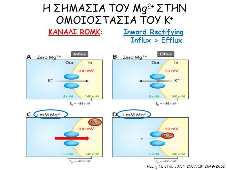ΚΑΝΑΛΙ ROMK: Η ΣΗΜΑΣΙΑ ΤΟΥ Mg 2+ ΣΤΗΝ ΟΜΟΙΟΣΤΑΣΙΑ ΤΟΥ Κ + Huang CL et al.