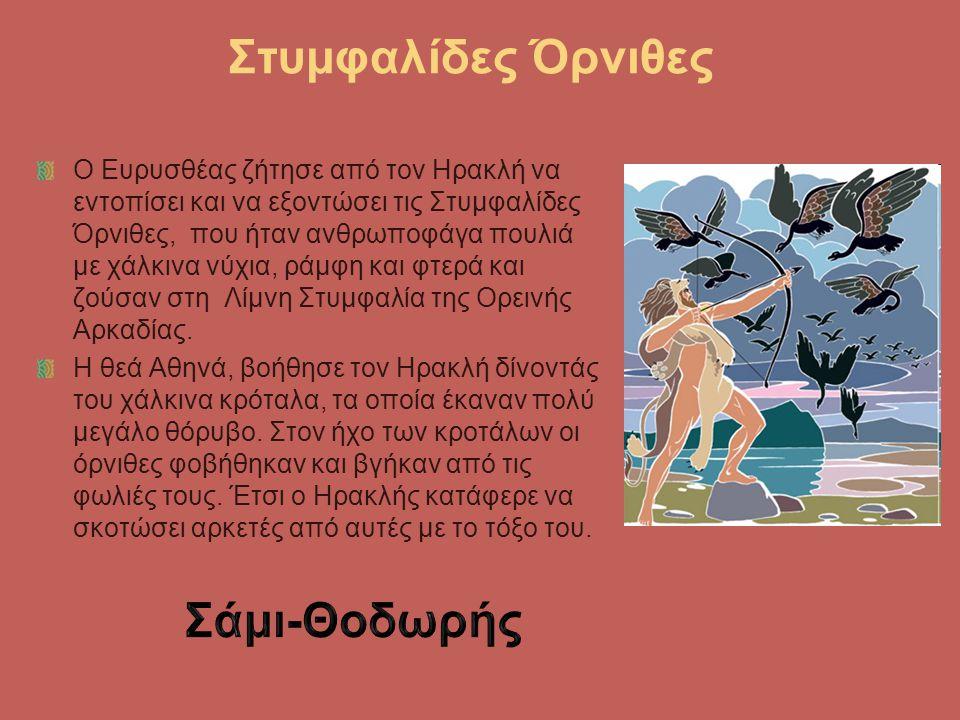 Στυμφαλίδες Όρνιθες Ο Ευρυσθέας ζήτησε από τον Ηρακλή να εντοπίσει και να εξοντώσει τις Στυμφαλίδες Όρνιθες, που ήταν ανθρωποφάγα πουλιά με χάλκινα νύ