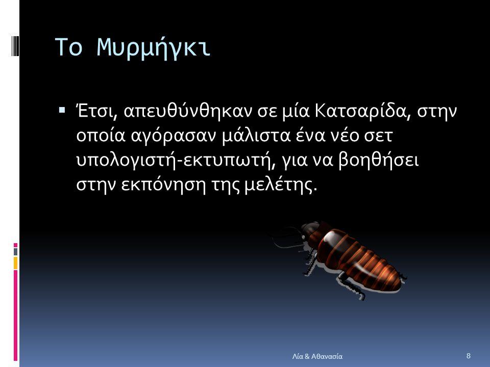 Το Μυρμήγκι  Έτσι, απευθύνθηκαν σε μία Κατσαρίδα, στην οποία αγόρασαν μάλιστα ένα νέο σετ υπολογιστή-εκτυπωτή, για να βοηθήσει στην εκπόνηση της μελέτης.