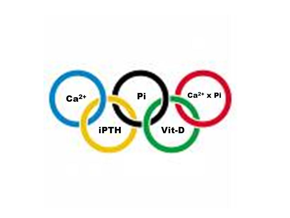 Pi Ca 2+ Ca 2+ x Pi iPTHVit-D