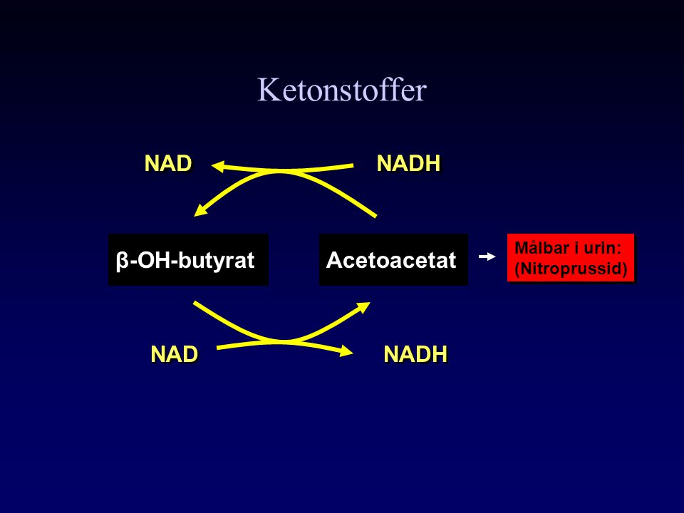 NADH NAD NADH Målbar i urin: (Nitroprussid) Målbar i urin: (Nitroprussid) β-OH-butyratAcetoacetat Ketonstoffer