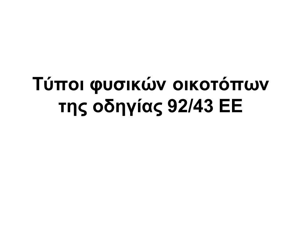 9340 : Δάση αριάς (Quercus ilex)