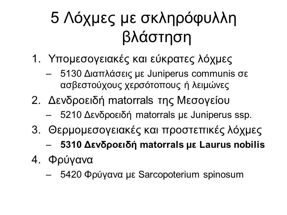 5 Λόχμες με σκληρόφυλλη βλάστηση 1.Yπομεσογειακές και εύκρατες λόχμες –5130 Διαπλάσεις με Juniperus communis σε ασβεστούχους χερσότοπους ή λειμώνες 2.