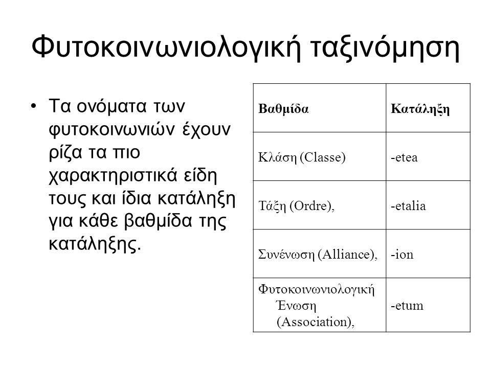 Φυτοκοινωνιολογική ταξινόμηση ΒαθμίδαΚατάληξη Κλάση (Classe)-etea Τάξη (Ordre),-etalia Συνένωση (Alliance),-ion Φυτοκοινωνιολογική Ένωση (Association)