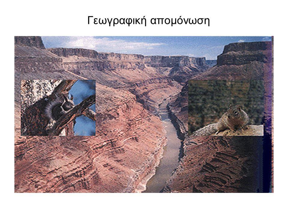 Γεωγραφική απομόνωση