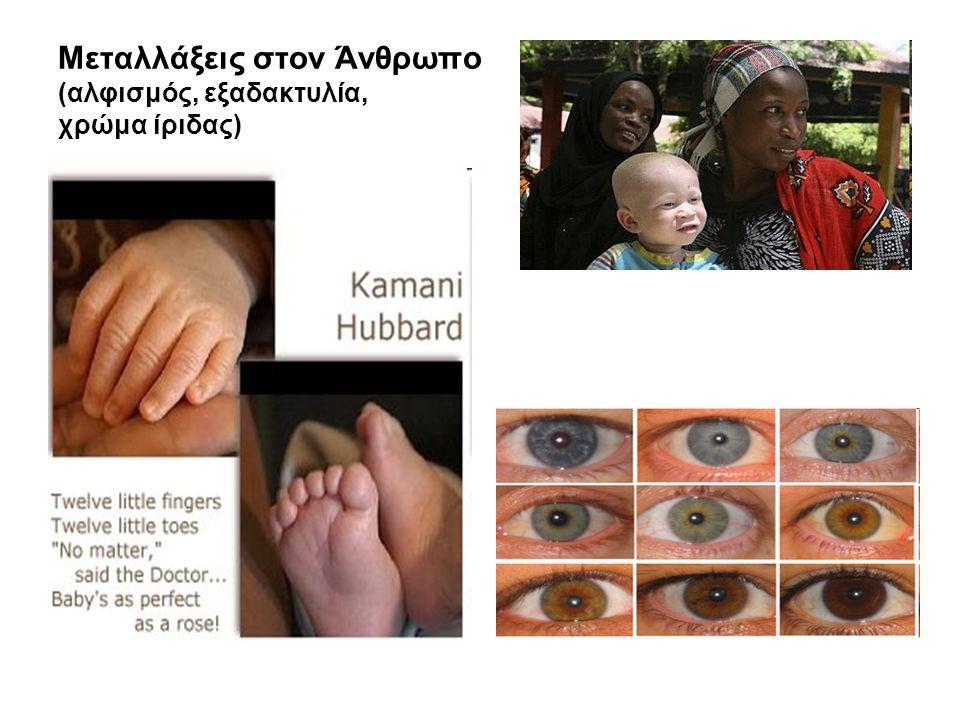 Μεταλλάξεις στον Άνθρωπο (αλφισμός, εξαδακτυλία, χρώμα ίριδας)