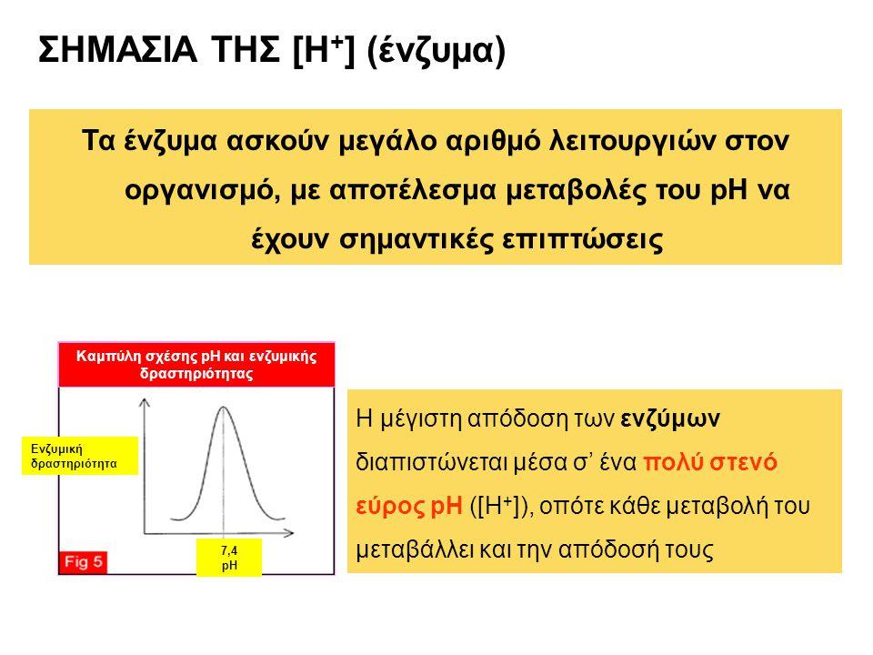 ΣΗΜΑΣΙΑ ΤΗΣ [Η + ] (ένζυμα) Τα ένζυμα ασκούν μεγάλο αριθμό λειτουργιών στον οργανισμό, με αποτέλεσμα μεταβολές του pH να έχουν σημαντικές επιπτώσεις Ενζυμική δραστηριότητα 7,4 pH Καμπύλη σχέσης pH και ενζυμικής δραστηριότητας Η μέγιστη απόδοση των ενζύμων διαπιστώνεται μέσα σ' ένα πολύ στενό εύρος pH ([Η + ]), οπότε κάθε μεταβολή του μεταβάλλει και την απόδοσή τους
