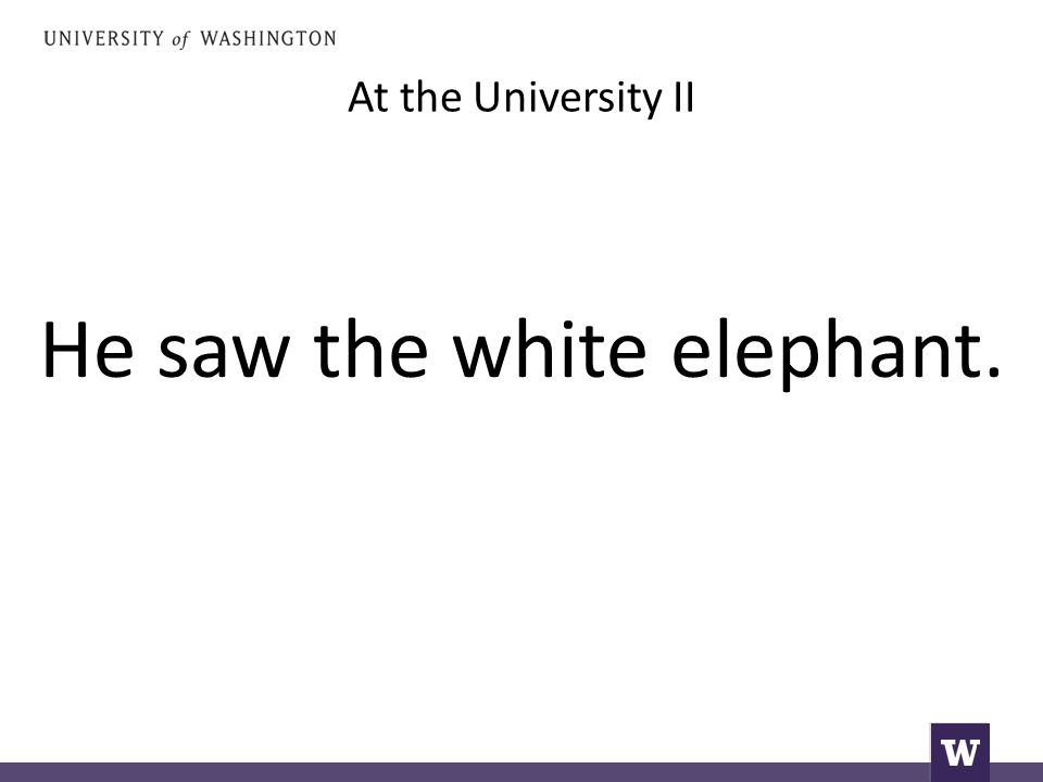 At the University II He saw the white elephant.