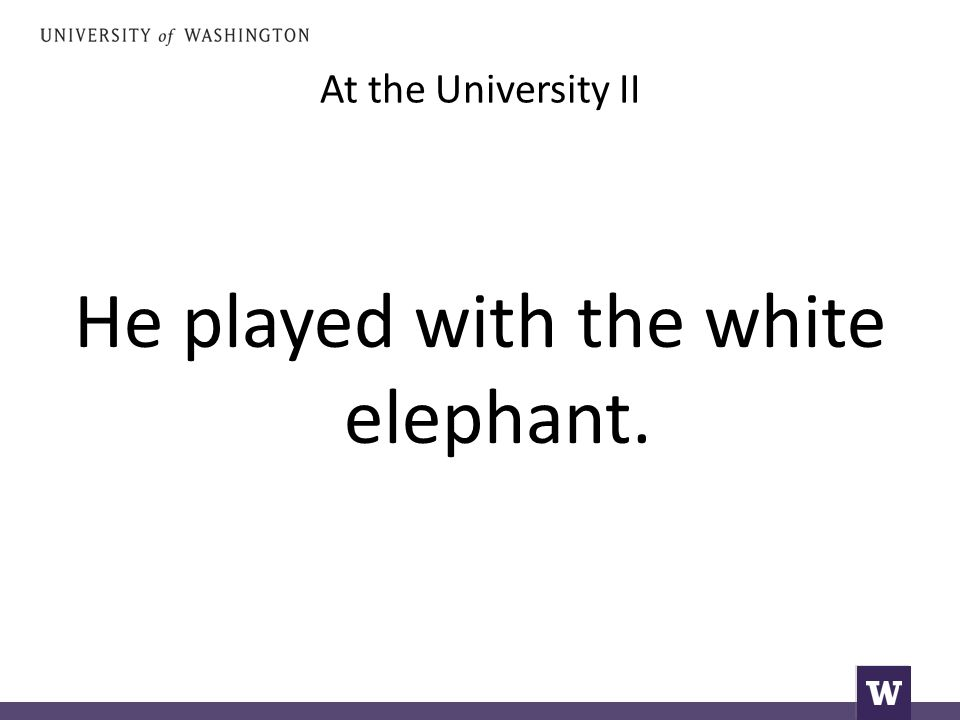At the University II He played with the white elephant.