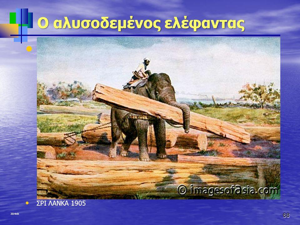 2014ntk O αλυσοδεμένος ελέφαντας ΣΡΙ ΛΑΝΚΑ 1905 68