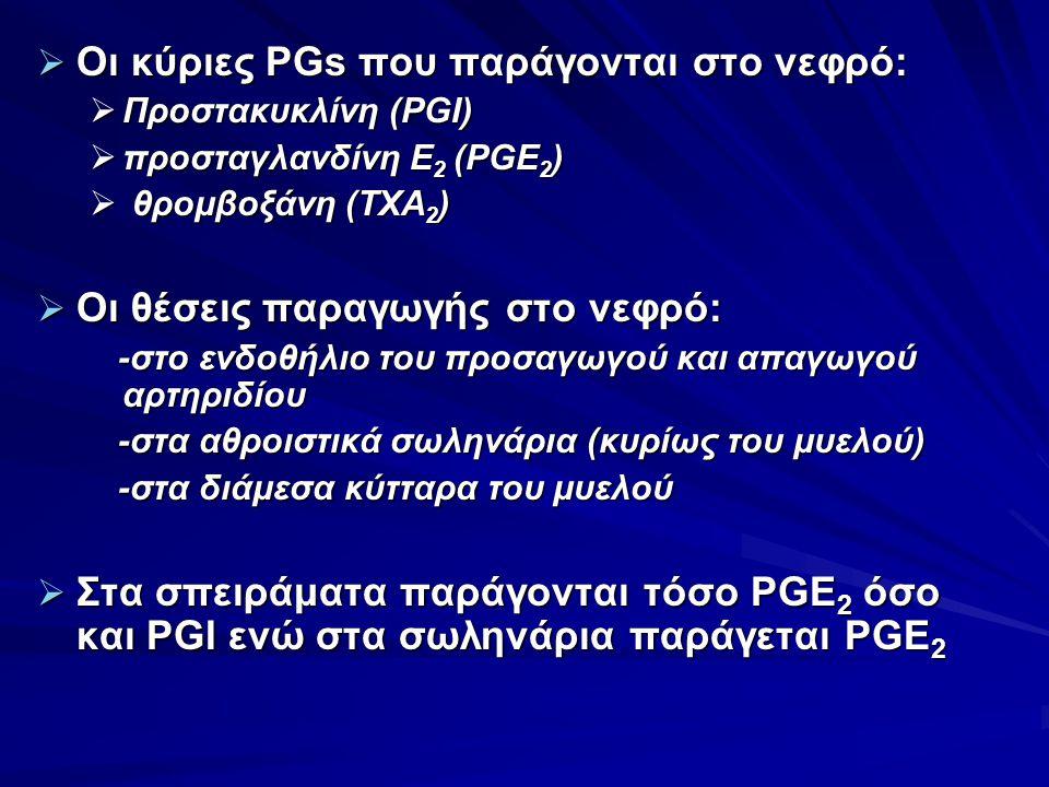  Οι κύριες PGs που παράγονται στο νεφρό:  Προστακυκλίνη (PGI)  προσταγλανδίνη Ε 2 (PGE 2 )  θρομβοξάνη (TXA 2 )  Oι θέσεις παραγωγής στο νεφρό: -