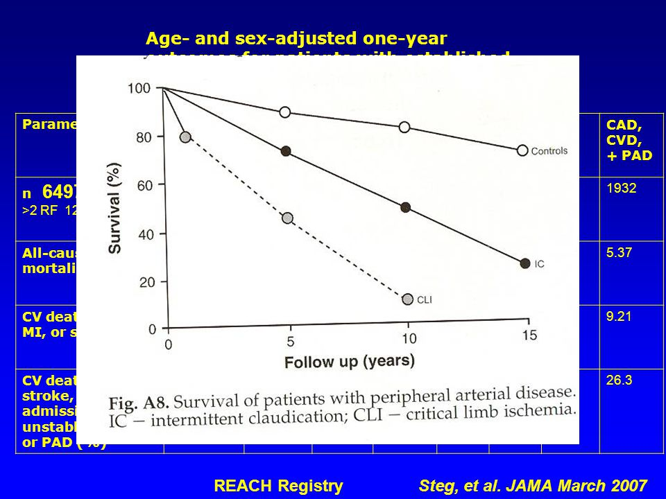 Age- and sex-adjusted one-year outcomes for patients with established vascular disease at one or more sites ParameterAny 1 system CAD alone < CVD alone PAD alone CAD + CVD CAD + PAD CVD + PAD CAD, CVD, + PAD n 64977 >2 RF 12422 55814317561235663456339426417391932 All-cause mortality (%) 2.452.422.552.393.614.583.585.37 CV death, MI, or stroke (%) 4.074.525.235.327.355.547.769.21 CV death, MI, stroke, or admission for TIA, unstable angina, or PAD (%) 12.6 Vs 5.31 15.214.5321.1419.823.121.926.3 REACH Registry Steg, et al.