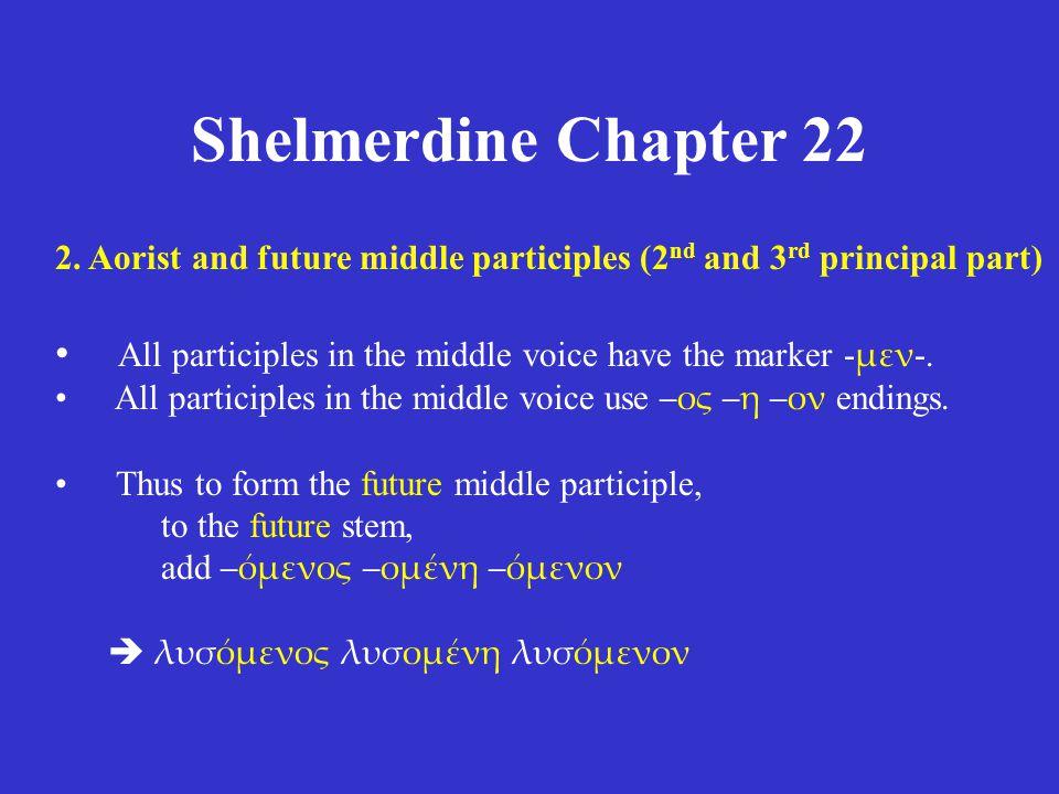 Shelmerdine Chapter 22 2.