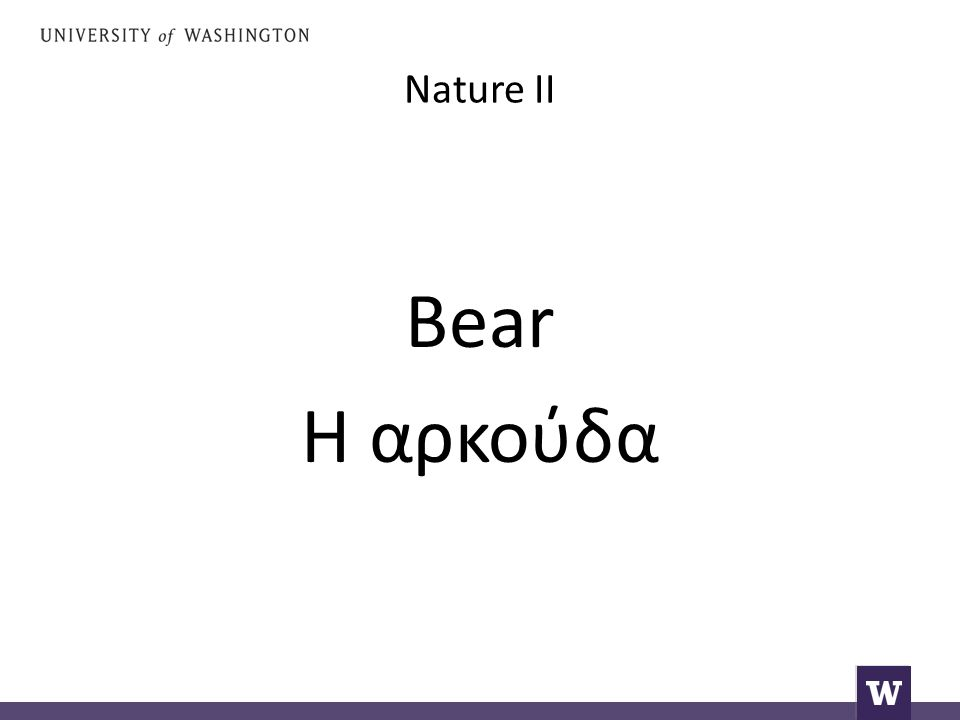 Nature II Bear Η αρκούδα